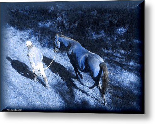 Blue Light Metal Print featuring the photograph The Light And Shadows Of A Man And His Horse by Patricia Keller