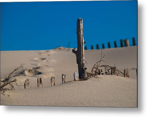 Sand Metal Print featuring the photograph The Lonely Driftwood by Trish Tritz
