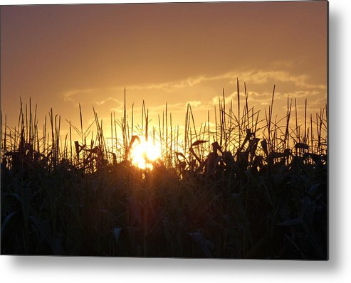 Lapeer Metal Print featuring the photograph Until Tomorrow by Sarah Boyd