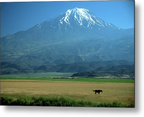 Anatolia Metal Print featuring the photograph View Of Mount Ararat In Turkey by Cagan H. Sekercioglu