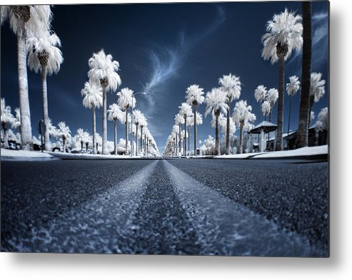 Infrared Metal Print featuring the photograph X by Sean Foster