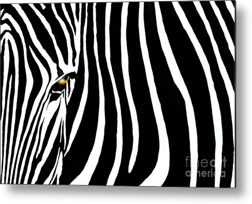 Zebra Metal Print featuring the photograph Zebressence by Dan Holm