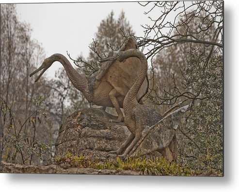 Dinosaur Metal Print featuring the photograph Dinosaur by Dawn OConnor