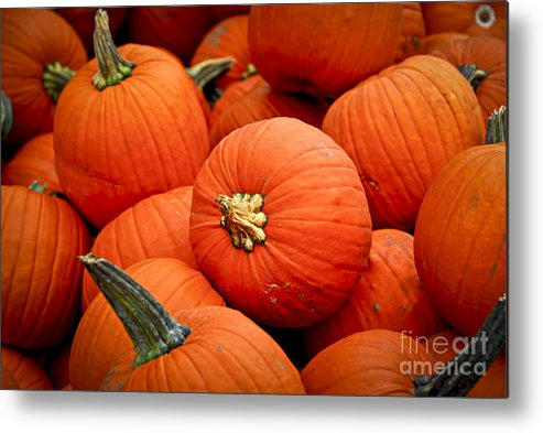Fall Metal Print featuring the photograph Pumpkins by Elena Elisseeva