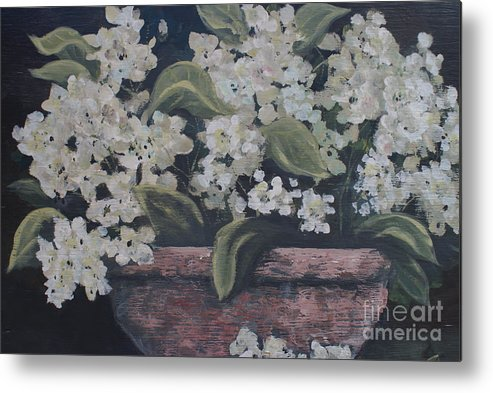 Potted Hydrangrae In The Moonlight By Terri B. Webb Metal Print featuring the painting A Glimps Of Light by Terri B Webb