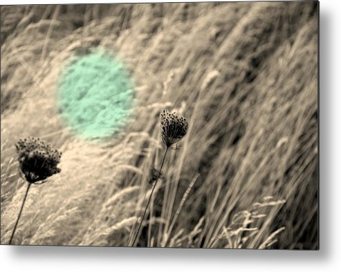 Landscape Metal Print featuring the photograph Close Up Breeze by Kathleen Grace