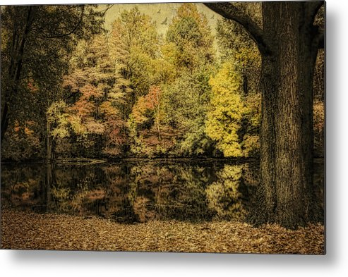 Fall Metal Print featuring the photograph Color Splash by Mary Timman
