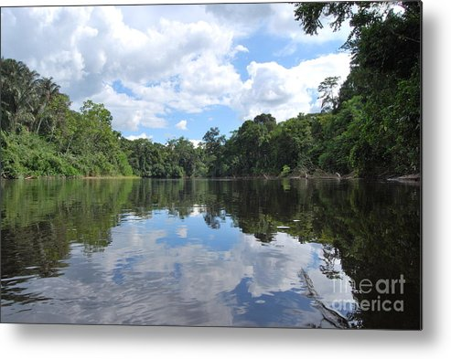 Ecuador Metal Print featuring the photograph Cuyabeno River by Fabian Romero Davila