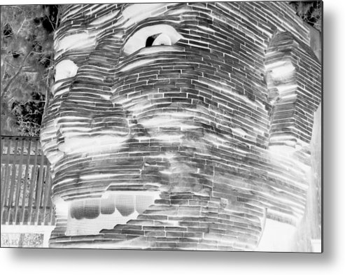 Architecture Metal Print featuring the photograph Gentle Giant In Negative Black And White by Rob Hans
