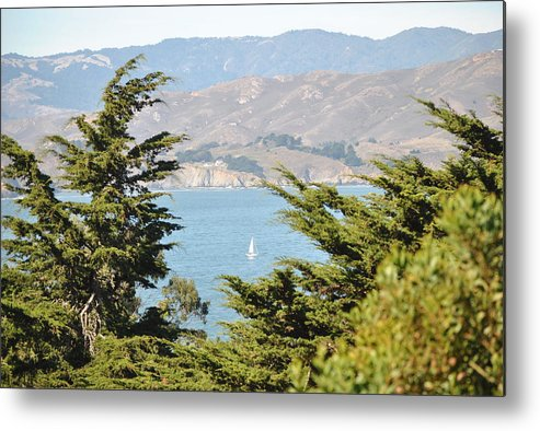 Marin Headlands Metal Print featuring the photograph Just A Peek by Nimmi Solomon