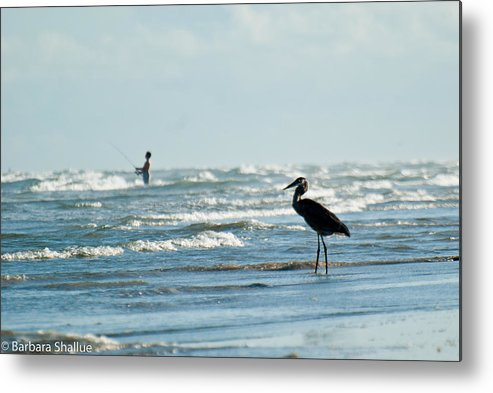 Fishing Metal Print featuring the photograph Of Like Mind by Barbara Shallue