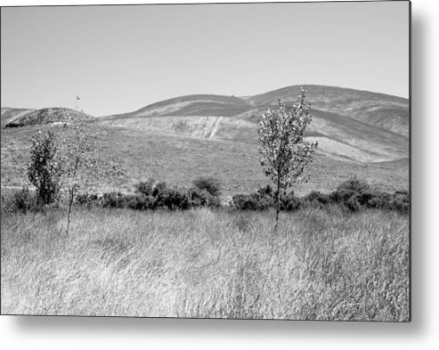 Los Alamos Metal Print featuring the photograph Open Hills by Kathleen Grace