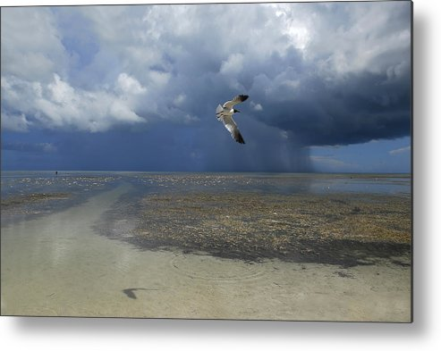 Color Image Metal Print featuring the photograph Rain Falls From A Huge Cloud by Raul Touzon