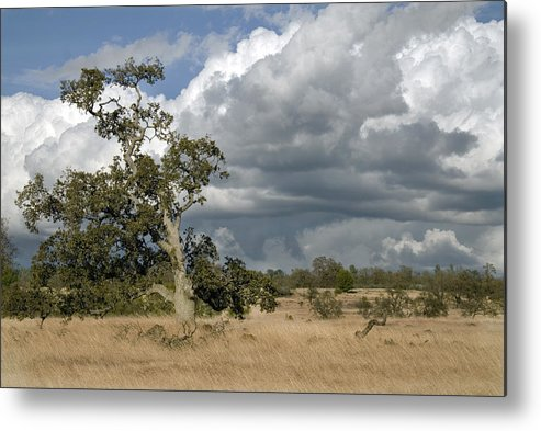 Landscape Metal Print featuring the photograph Storm Clouds by Richard Verkuyl