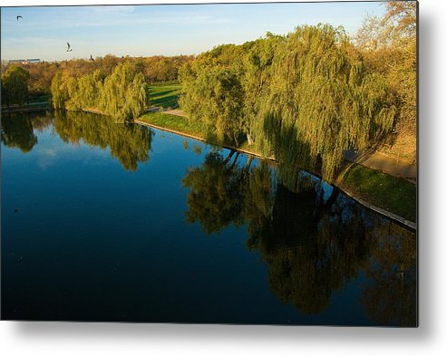 Park Metal Print featuring the photograph Sunset At The Park 2 by Artin Mikaelyan