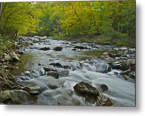 Autumn Metal Print featuring the photograph Tennessee Stream 6031 by Michael Peychich