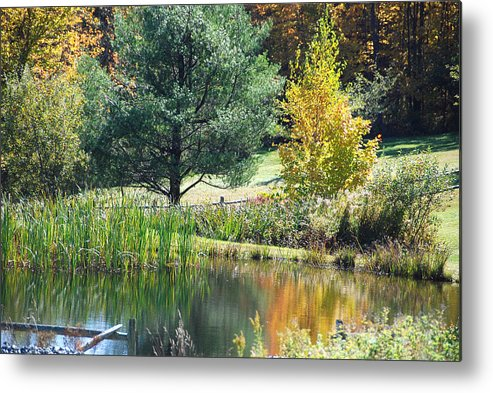 Landscape Metal Print featuring the photograph Tranquil by John Schneider
