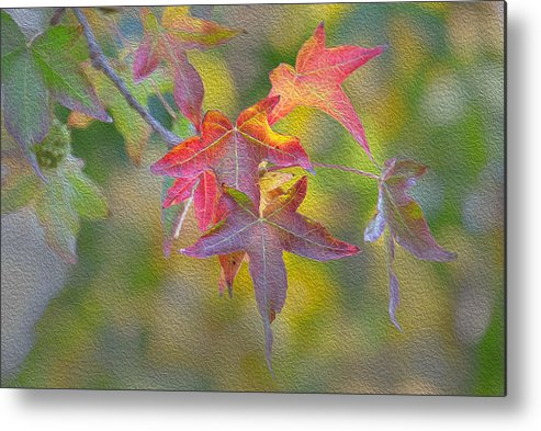 Yellow Leave Metal Print featuring the painting Fall Color by Jessica Nguyen