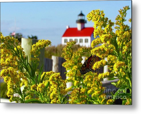 East Point Lighthouse Metal Print featuring the photograph Monarch At East Point Light by Nancy Patterson