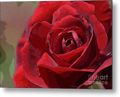 Flower Metal Print featuring the photograph Red Rose by Julie Blackburn