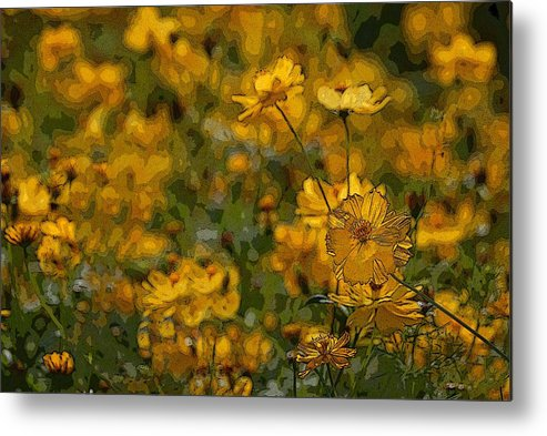 Yellow Metal Print featuring the photograph Summer Flowers by Ed Zirkle