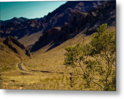 Valley Of Fire Metal Print featuring the photograph Valley Of Fire Nevada by Patrick Flynn
