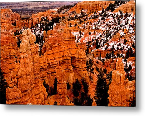 Landscape Metal Print featuring the photograph Bryce Canyon N.p. by Larry Gohl