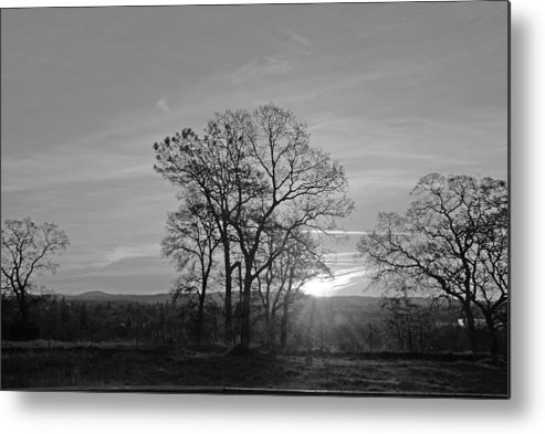 Landscape Metal Print featuring the photograph A. M. by M Ryan