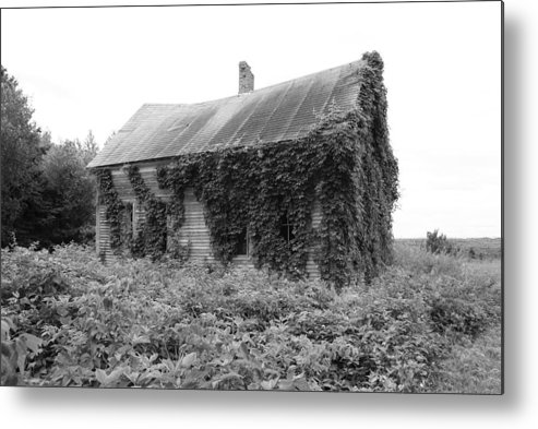 Abandoned Metal Print featuring the photograph Abandoned by Lisa Hebert