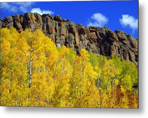 Fall Colors Metal Print featuring the photograph Aspen Glory by Marty Koch