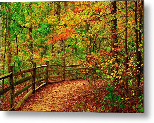 Autumn Landscapes Metal Print featuring the photograph Autumn Bend - Allaire State Park by Angie Tirado