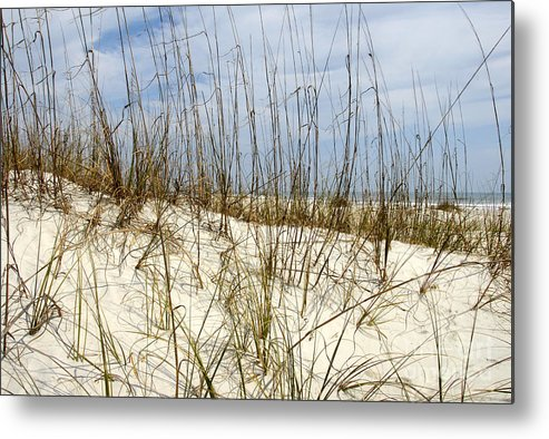 Beach Metal Print featuring the photograph Beach Dunes by David Lee Thompson