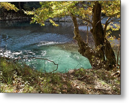 Voidomatis River Metal Print featuring the photograph Beatiful Morning by Loukianos Petrovas