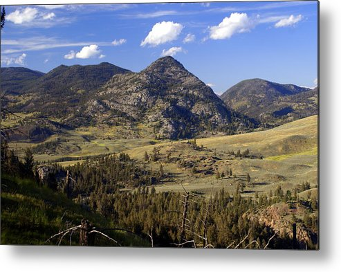 Yellowstone National Park Metal Print featuring the photograph Blacktail Road Landscape 2 by Marty Koch