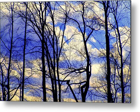 Lakeview Metal Print featuring the photograph Blue Clouds by Aron Chervin