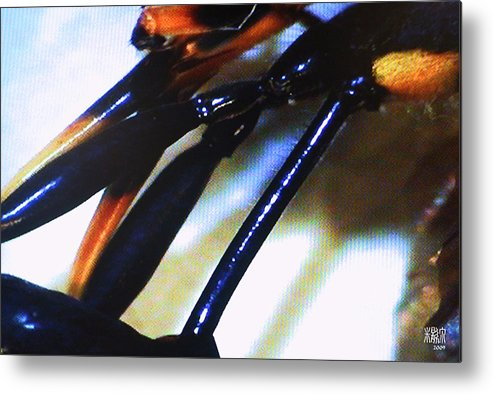 Microscopic Metal Print featuring the photograph Body Of A Wasp by Michele Caporaso