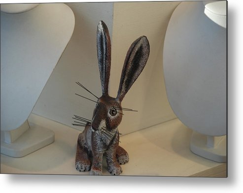 Rabbit Metal Print featuring the photograph Boink Rabbit by Rob Hans