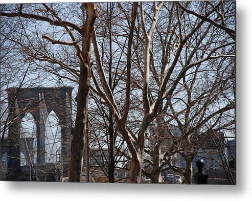 Architecture Metal Print featuring the photograph Brooklyn Bridge Thru The Trees by Rob Hans