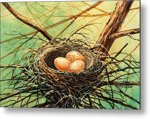 Wildlife Metal Print featuring the painting Brown Speckled Eggs by Frank Wilson