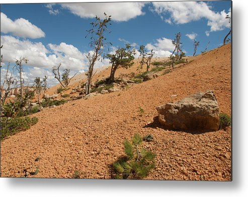 America Metal Print featuring the photograph Bryce Canyon National Park by Andre Distel