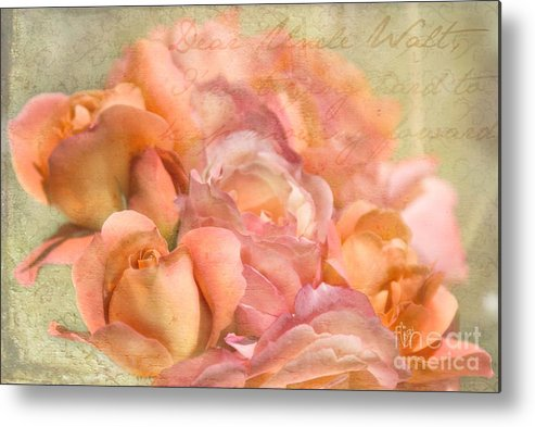 Rose Metal Print featuring the photograph Dear Uncle Walt by Cindy Garber Iverson