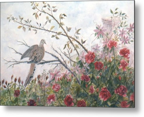 Dove; Roses Metal Print featuring the painting Dove And Roses by Ben Kiger