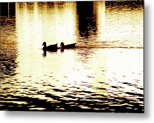 Silhouettes Metal Print featuring the photograph Ducks On Pond 1 by Steve Ohlsen