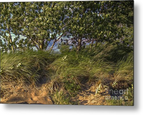 Landscape Metal Print featuring the digital art Elements At Play 2015 by Kathryn Strick