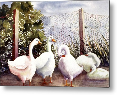Animal Metal Print featuring the painting Fenced In Quackers by Connie Williams