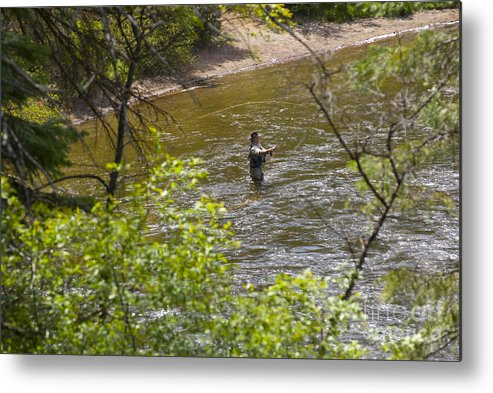 Fishing Metal Print featuring the photograph Fly Fishing by Louise Magno