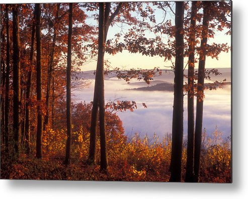 Foliage Metal Print featuring the photograph Foliage Above Valley Fog by John Burk