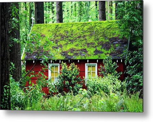 Chapel Metal Print featuring the photograph Forest Chapel by Lori Leigh