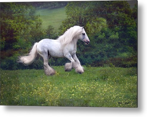 Horse Metal Print featuring the photograph Free Billy by Fran J Scott