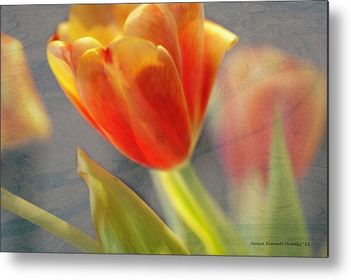 Jessica Manelis Metal Print featuring the photograph Gentility by Jessica Manelis